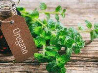 Skin benefits and uses of oregano oil. Do you know them?